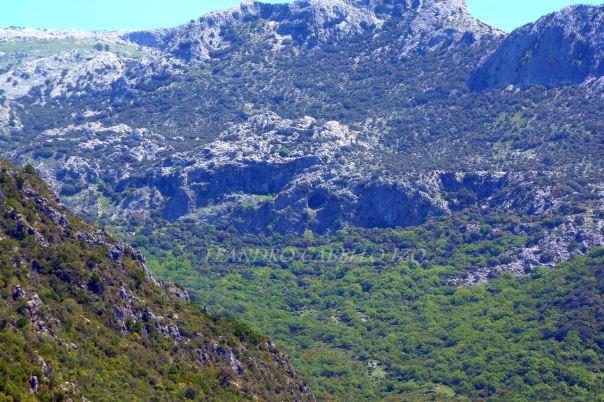 Cueva Alta-Francisco Jarillo-1
